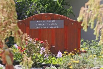 wrigley-community-garden